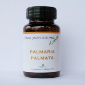 palmaria_palmata